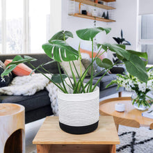 Load image into Gallery viewer, Cotton Rope Plant Basket Indoor Modern Decor For Living Room
