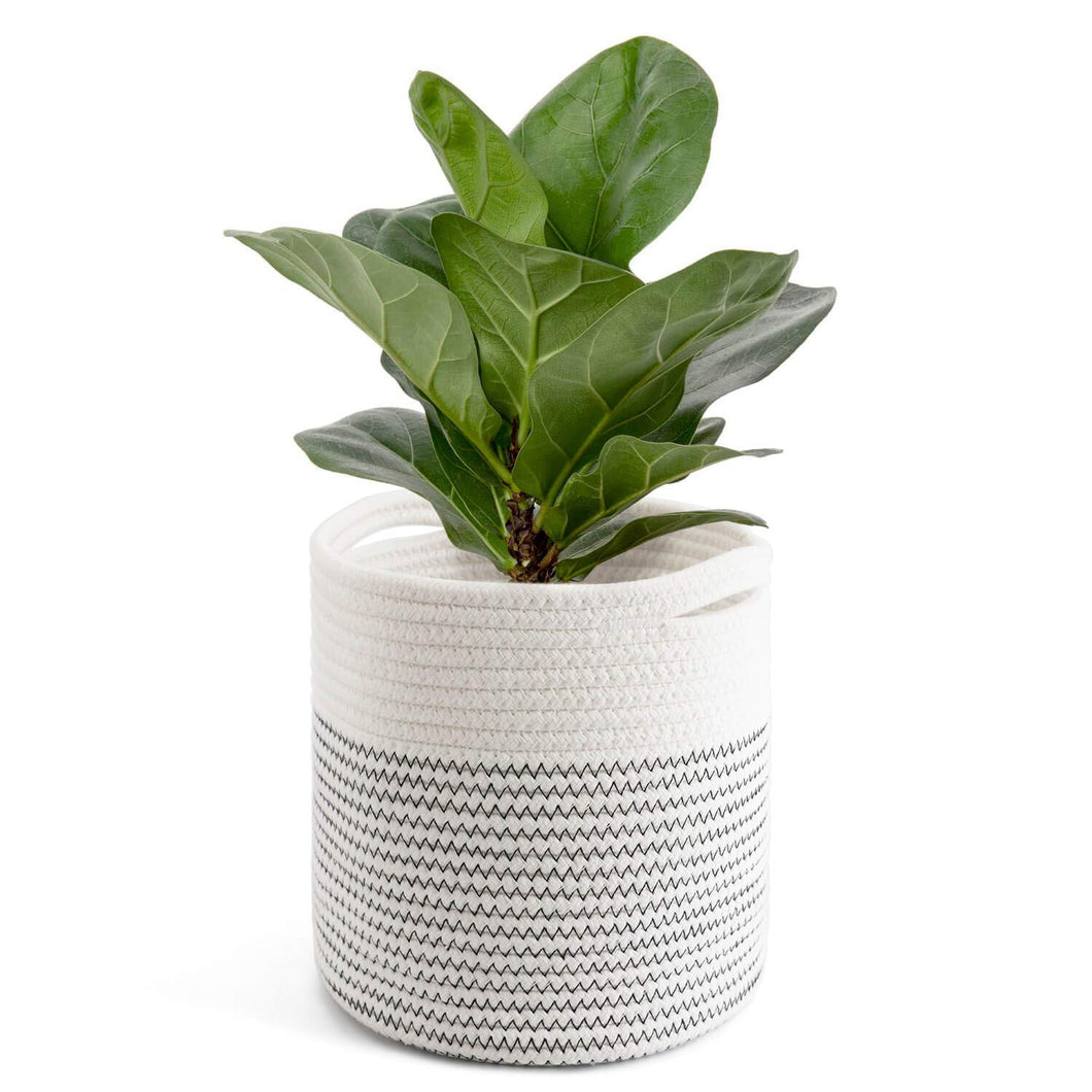 Cotton Rope Plant Basket Modern Woven Basket