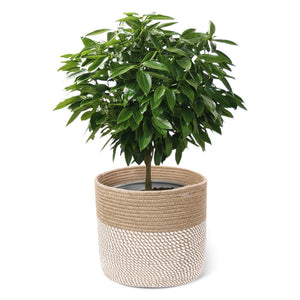 Jute and Cotton Rope Plant Basket