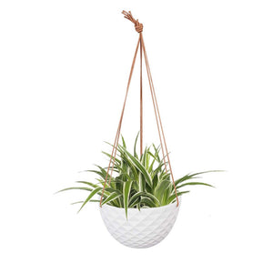 Ceramic Plant Pots Hanging Planter Home Decor