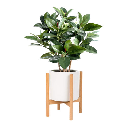 Corner Plant Stand Wooden Indoor Flower Pot Decor