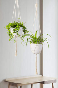 Macrame Wall Plant Hanger Hanging Planter Wall Art For Living Room