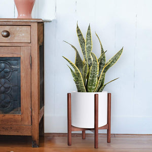 Mid Century Modern Plant Stand Retro Home Decor For Bedroom
