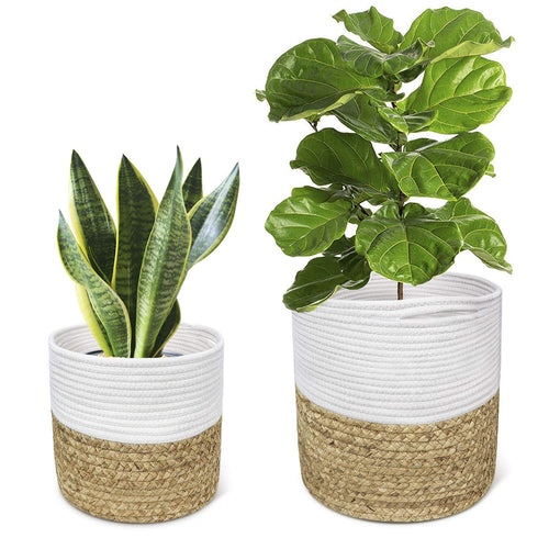 2 Pcs Plant Basket Indoor Hyacinth Planter Home Decor