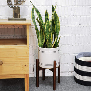 Plant Stand Indoor Mid Century Modern Home Decor For Bedroom