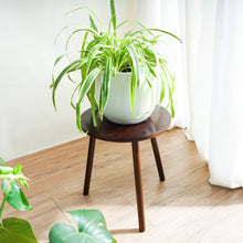 Load image into Gallery viewer, Small Round Side Table Indoor Tall Plant Stand For Living Room