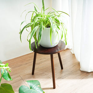 Small Round Side Table Indoor Tall Plant Stand For Living Room