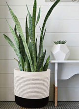 "Load image into Gallery viewer, Small Wicker Baskets For Flower Pot Indoor Planters 11"" x 11"" For Bedroom"
