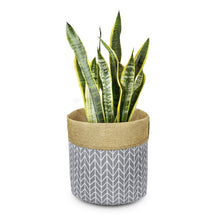 Load image into Gallery viewer, Plant Basket Indoor Planter Up to 12 Inch Flower Pot Grey