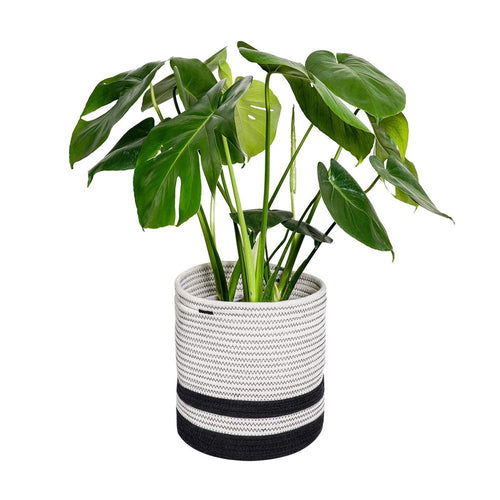 Woven Cotton Rope Plant Basket Black and White Stripes