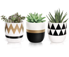 Load image into Gallery viewer, Timeyard Modern Plant Pots Flower Pots Mini Planter Indoor