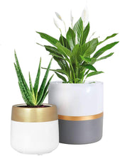 Load image into Gallery viewer, 2 Pcs Ceramic Pots Indoor Home Decor with Drainage Hole