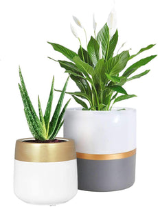 2 Pcs Ceramic Pots Indoor Home Decor with Drainage Hole