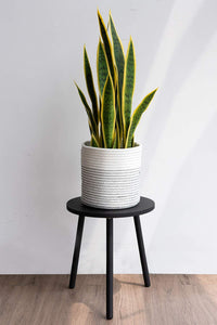 Small Round Side Table Indoor Tall Plant Stand