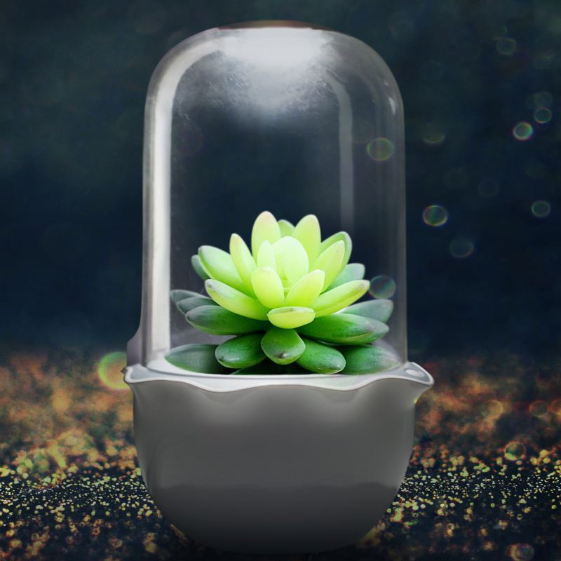 JS NEST - Smart Indoor Garden for Succulents