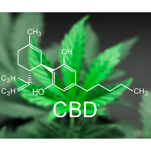 What is CBD? - CBD & the endocannabinoid system, About CBD