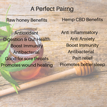 Load image into Gallery viewer, Colorado Hemp Honey - Ginger Soothe - LivKind CBD Wellness Gifts