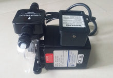 Load image into Gallery viewer, BLUE-WHITE CHEM FEED METERING PUMP - poolandspa.ph