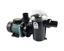 Load image into Gallery viewer, Emaux SD & SDUS Series Pump - poolandspa.ph