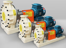 Load image into Gallery viewer, Emaux SWP Series  Corrosion Resistant FRP Pump - poolandspa.ph