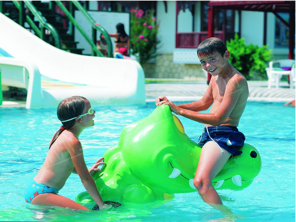 Interactive Play Ground Frog Swing Game - poolandspa.ph