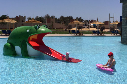Aqua Play Frog Slide - poolandspa.ph