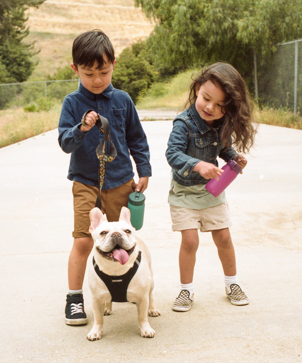 children holding dog leash and PLAY tumblers
