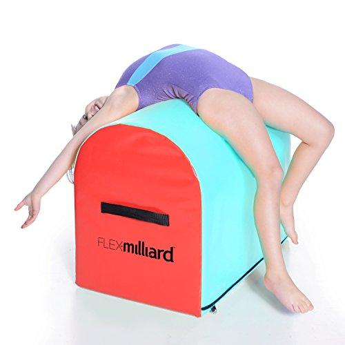 Milliard Gymnastics Mailbox Tumbling Aid Trainer, Spotting Equipment, 24x16x19.5 inches Blue/Red - Eatsleepflip