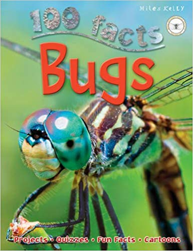 100 Facts: Bugs