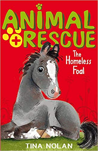Animal Rescue: The Homeless Foal