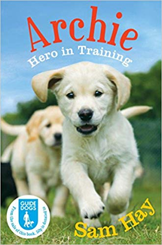 Archie: Hero in Training