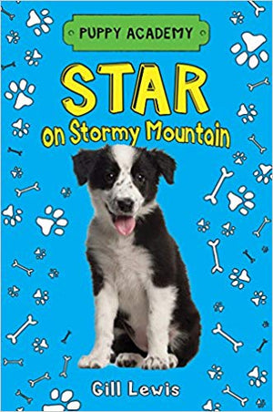 Star on Stormy Mountain (Puppy Academy)