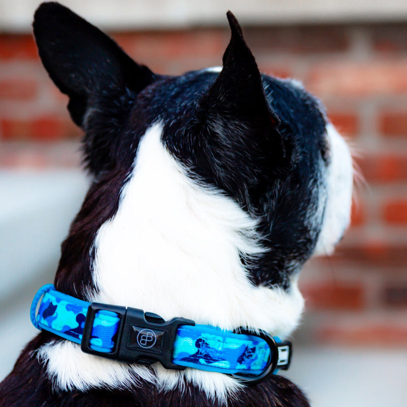 the blue camo dog collar - BRIXEN