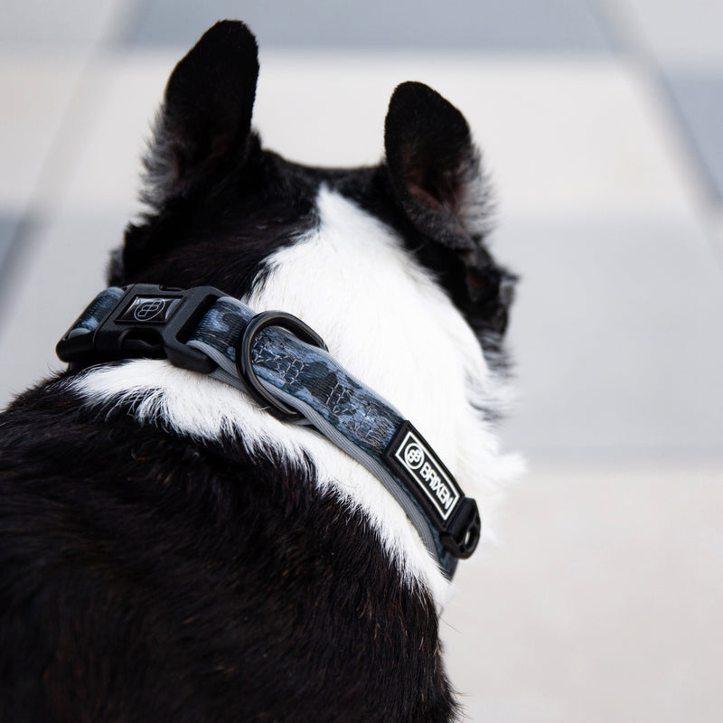 the gray camo dog collar - BRIXEN