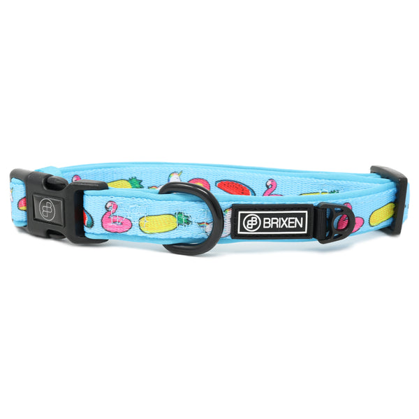 the pool party dog collar - BRIXEN