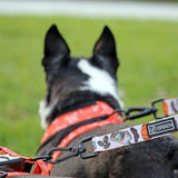 The Pup'kin Spice Dog Leash - BRIXEN