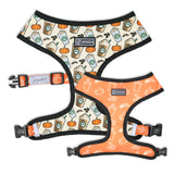 pup'kin spice latte dog harness - BRIXEN