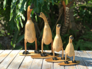 Surfer Ducks