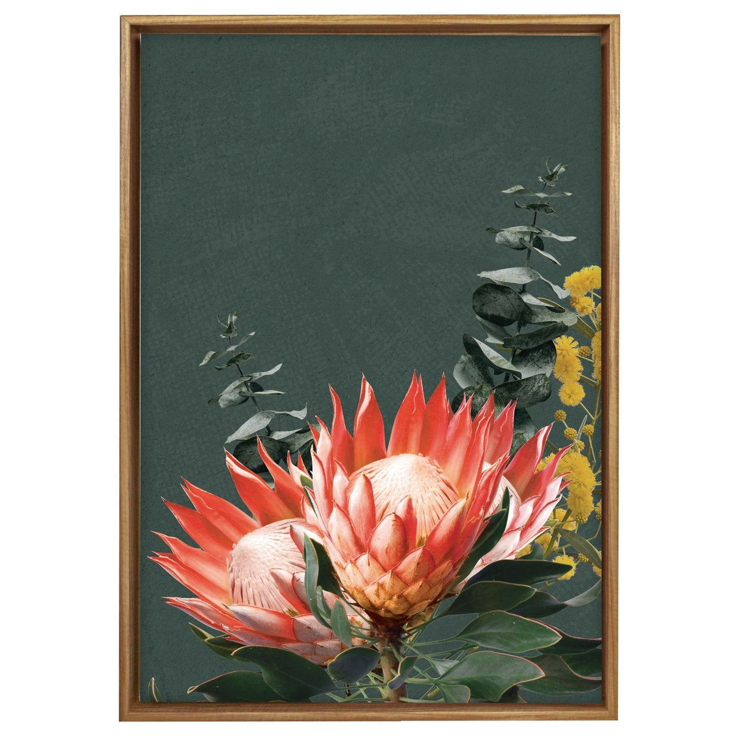 Native Protea Framed Canvas 64x97
