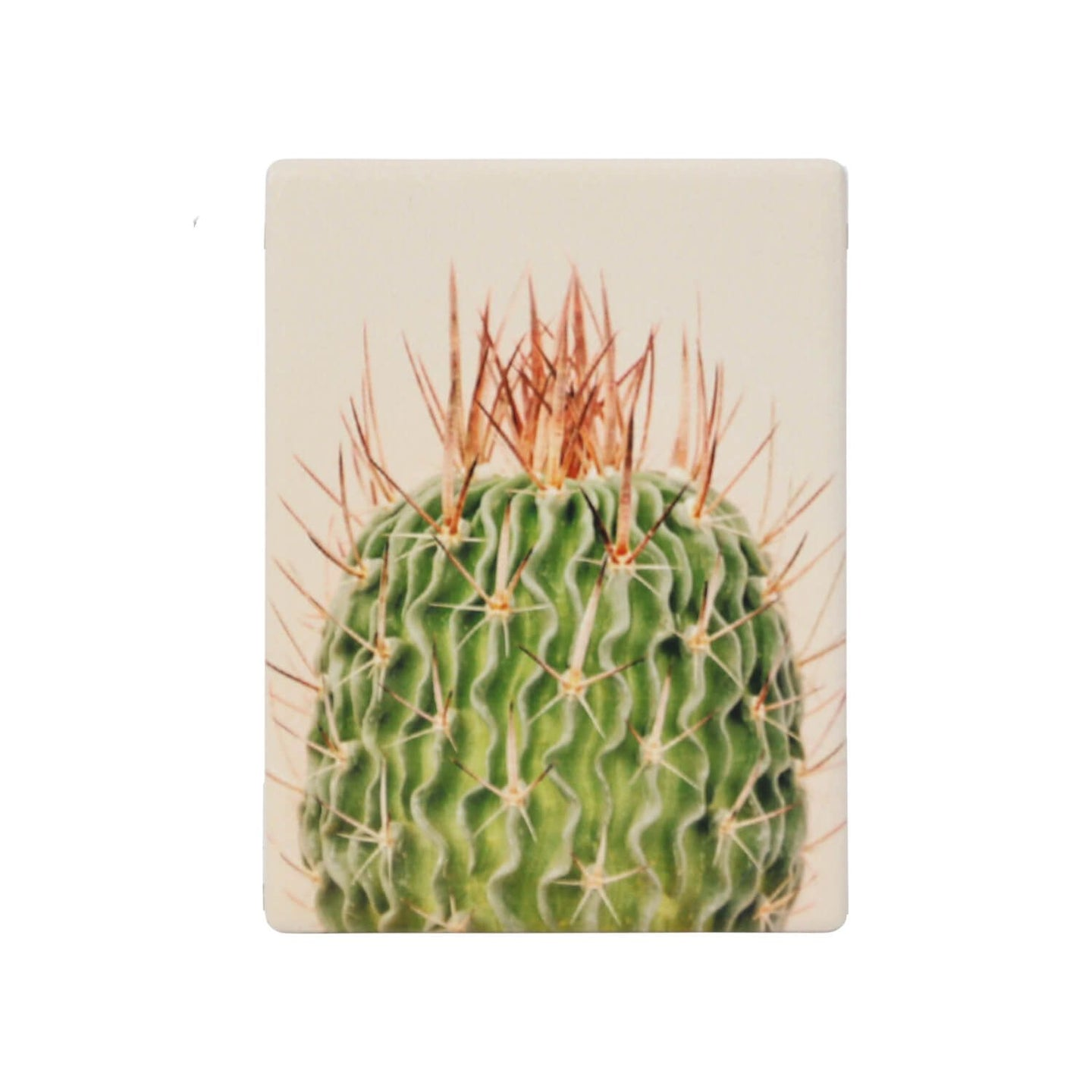 Natural Oasis Spiky Ceramic Magnet