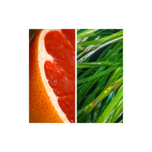 Load image into Gallery viewer, MODM Hand + Body Wash - Grapefruit + Seagrass