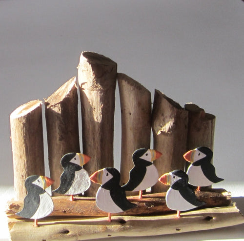 Puffins On Groynes