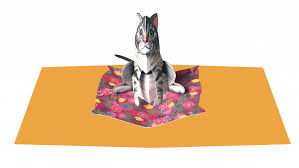 Cat on Mat