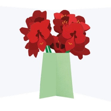 Amaryllis Pop Up Card