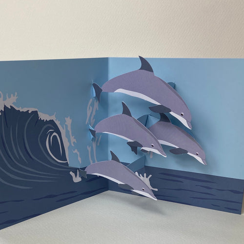 Dolphin Pop up card