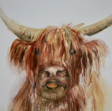 Load image into Gallery viewer, 2 Stag Cards and 2 Highland Cow Cards