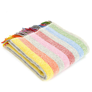 Rainbow Stripe Wool Throw