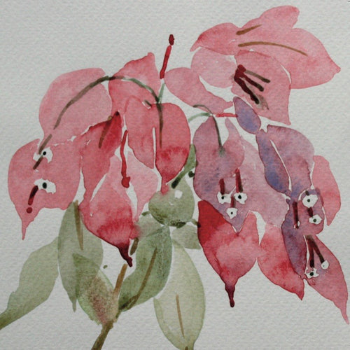 Bougainvillea Flower Card
