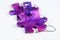 Earrings Festive Puzzle Piece Pair (Purple/Blue) [5]