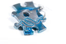 Earrings Gemini Puzzle Piece Pair (Teal/Grey) [21]